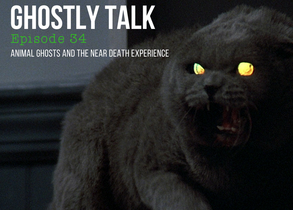 Episode 34 – Animal Ghosts and the Near Death Experience