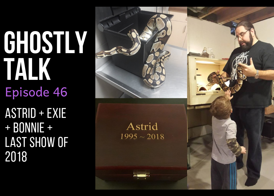 Episode 46 – Farewell to Astrid and 2018